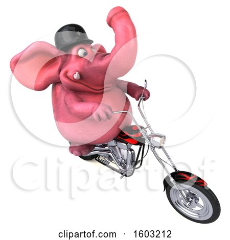 Clipart of a 3d Pink Elephant Biker Riding a Chopper Motorcycle, on a White Background - Royalty Free Illustration by Julos