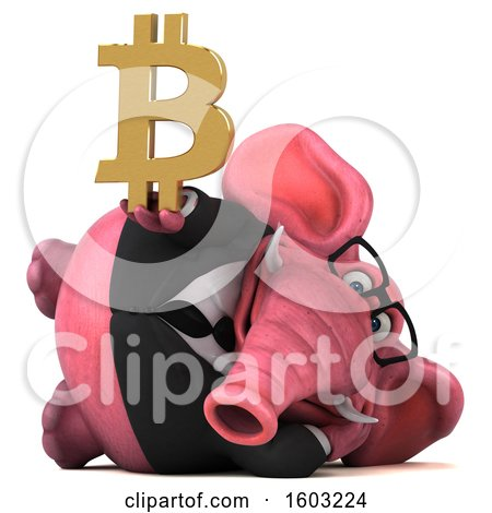 Clipart of a 3d Pink Business Elephant Holding a Bitcoin Symbol, on a White Background - Royalty Free Illustration by Julos
