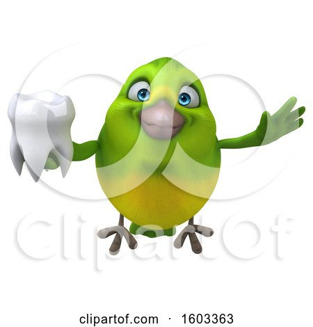 Clipart of a 3d Green Bird Holding a Tooth, on a White Background - Royalty Free Illustration by Julos