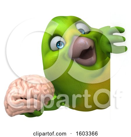 Clipart of a 3d Green Bird Holding a Brain, on a White Background - Royalty Free Illustration by Julos