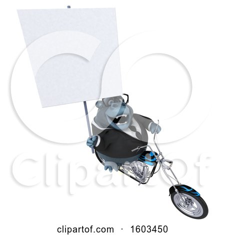 Clipart of a 3d Business Gorilla Biker Riding a Chopper Motorcycle, on a White Background - Royalty Free Illustration by Julos