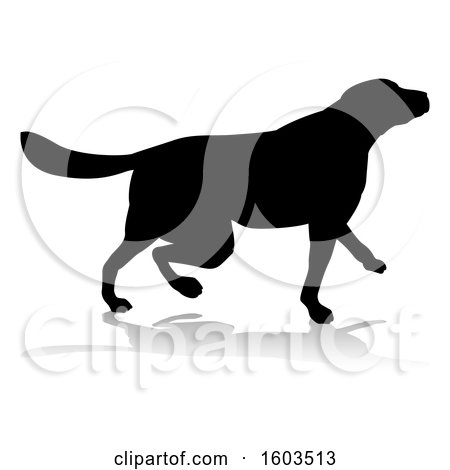 Clipart of a Silhouetted Golden Retriever Dog, with a Reflection or Shadow, on a White Background - Royalty Free Vector Illustration by AtStockIllustration