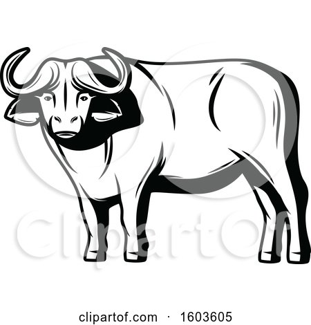 Clipart of a Water Buffalo in Black and White - Royalty Free Vector Illustration by Vector Tradition SM