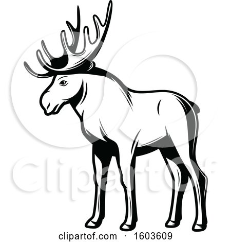 Clipart of a Moose in Black and White - Royalty Free Vector Illustration by Vector Tradition SM