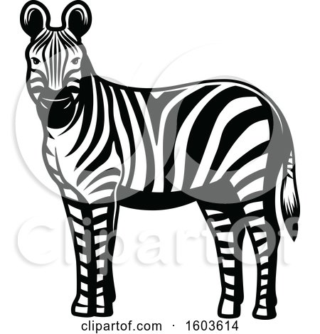 Clipart of a Zebra in Black and White - Royalty Free Vector Illustration by Vector Tradition SM