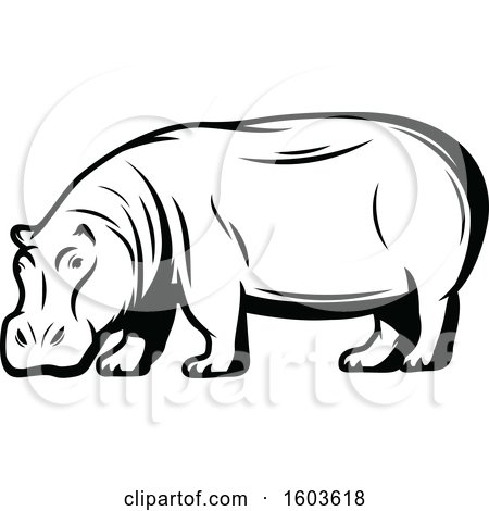Clipart of a Hippopotamus in Black and White - Royalty Free Vector Illustration by Vector Tradition SM