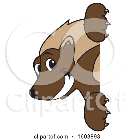 Clipart of a Wolverine School Mascot Character Looking Around a Sign - Royalty Free Vector Illustration by Toons4Biz