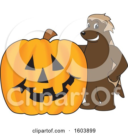 Clipart of a Wolverine School Mascot Character with a Halloween Pumpkin - Royalty Free Vector Illustration by Toons4Biz