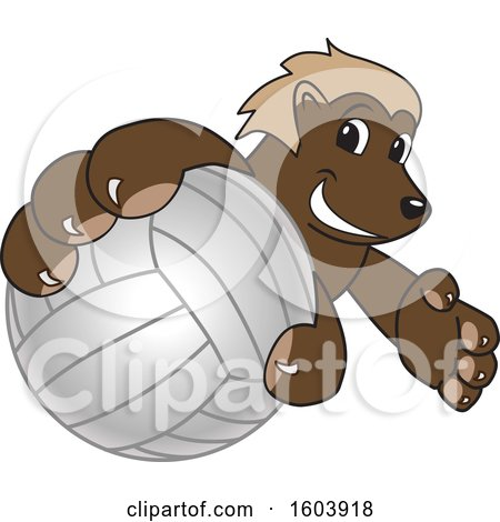 Clipart of a Wolverine School Mascot Character Grabbing a Volleyball - Royalty Free Vector Illustration by Toons4Biz