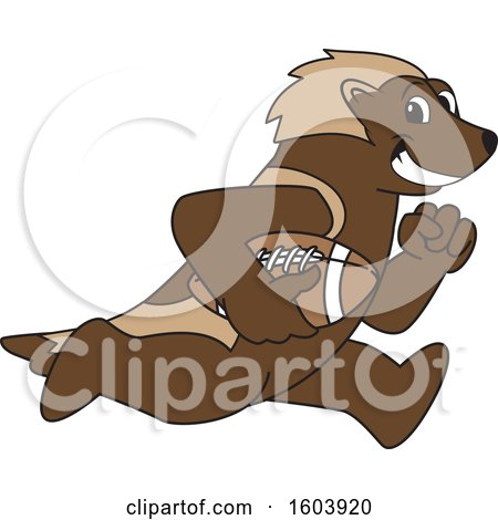 Clipart of a Wolverine School Mascot Character Running with a Football - Royalty Free Vector Illustration by Toons4Biz