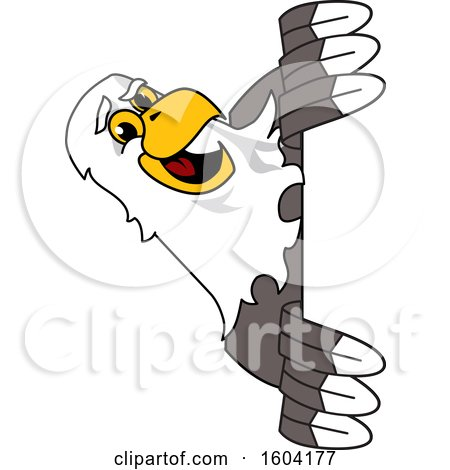 Clipart of a Bald Eagle School Mascot Character Looking Around a Sign - Royalty Free Vector Illustration by Toons4Biz
