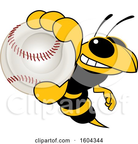 Clipart of a Hornet or Yellow Jacket School Mascot Character Grabbing a Baseball - Royalty Free Vector Illustration by Toons4Biz