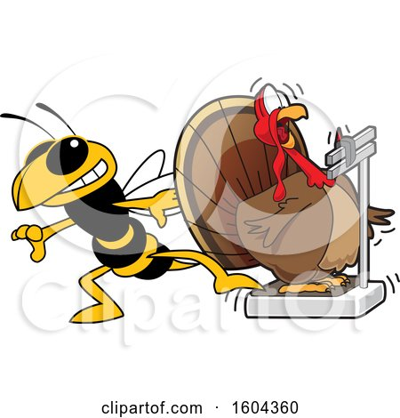 Clipart of a Hornet or Yellow Jacket School Mascot Character Tricking a Turkey Bird Weighing Itself - Royalty Free Vector Illustration by Toons4Biz