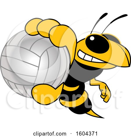 Clipart of a Hornet or Yellow Jacket School Mascot Character Grabbing a Volleyball - Royalty Free Vector Illustration by Toons4Biz