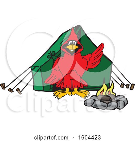 Clipart of a Red Cardinal Bird School Mascot Character Camping - Royalty Free Vector Illustration by Toons4Biz