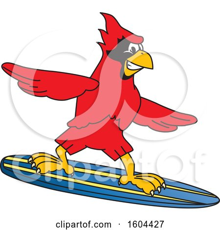 Clipart of a Red Cardinal Bird School Mascot Character Surfing - Royalty Free Vector Illustration by Toons4Biz