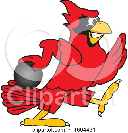 Clipart of a Red Cardinal Bird School Mascot Character Bowling - Royalty Free Vector Illustration by Toons4Biz