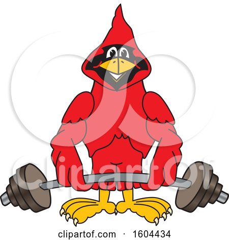 Clipart of a Red Cardinal Bird School Mascot Character Lifting a Barbell - Royalty Free Vector Illustration by Toons4Biz