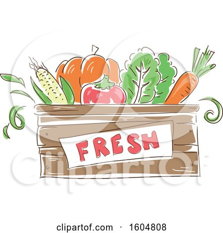 Clipart of a Fesh Crate of Vegetables - Royalty Free Vector Illustration by BNP Design Studio