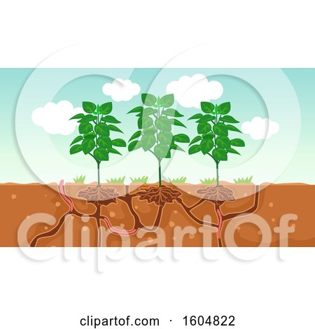 Clipart of Plants and the Air and Water Passage in the Soil Created by Worms - Royalty Free Vector Illustration by BNP Design Studio