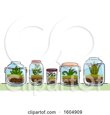 Clipart of a Garden of Glass Terrariums and Plants - Royalty Free Vector Illustration by BNP Design Studio