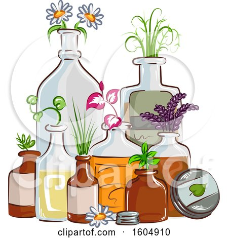Clipart of Herbal Plants Growing in Bottles - Royalty Free Vector Illustration by BNP Design Studio