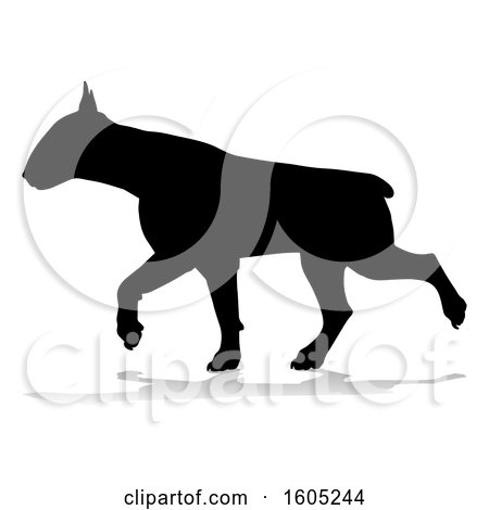 Clipart of a Silhouetted Bull Terrier Dog Running, with a Reflection or Shadow, on a White Background - Royalty Free Vector Illustration by AtStockIllustration