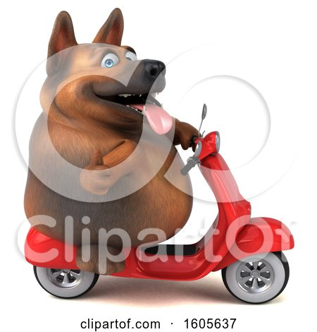 Clipart of a 3d German Shepherd Dog Riding a Scooter, on a White Background - Royalty Free Illustration by Julos
