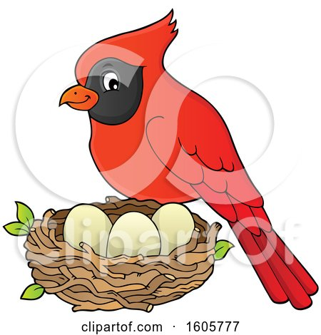 Clipart of a Red Cardinal Bird by a Nest - Royalty Free Vector Illustration by visekart