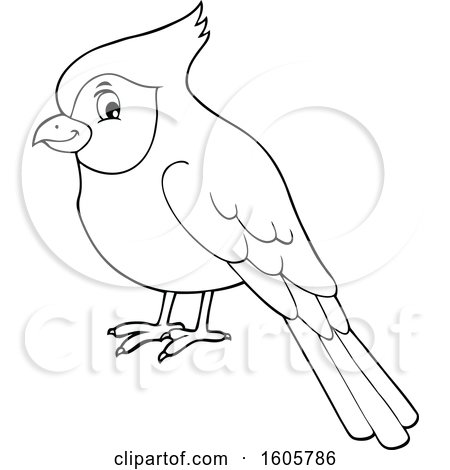Clipart of a Black and White Cardinal Bird - Royalty Free Vector Illustration by visekart