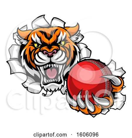 Clipart of a Vicious Tiger Mascot Breaking Through a Wall with a Cricket Ball - Royalty Free Vector Illustration by AtStockIllustration