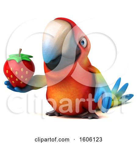 Clipart of a 3d Scarlet Macaw Parrot Holding a Strawberry, on a White Background - Royalty Free Illustration by Julos