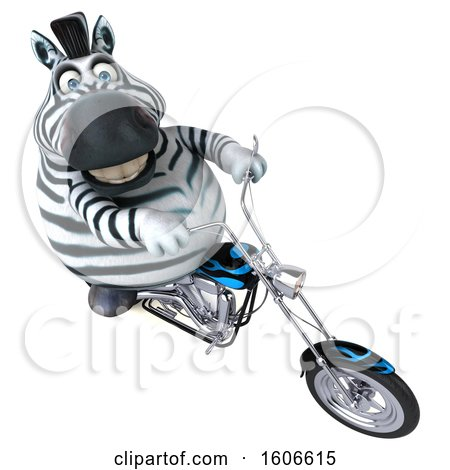 Clipart of a 3d Zebra Biker Riding a Chopper Motorcycle, on a White Background - Royalty Free Illustration by Julos