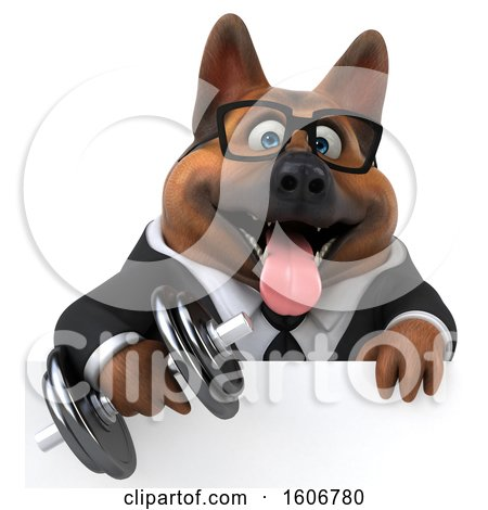 Clipart of a 3d Business German Shepherd Dog Holding a Dumbbell, on a White Background - Royalty Free Illustration by Julos