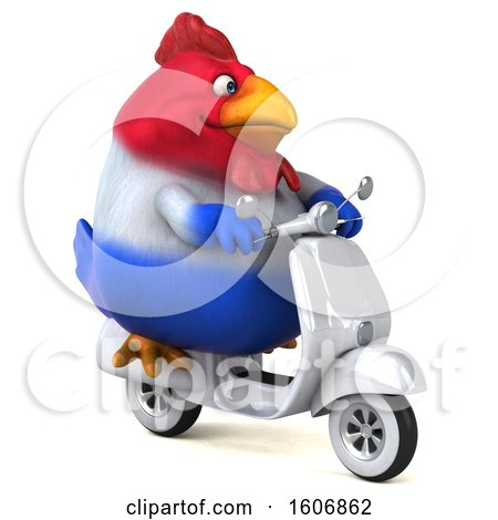 Clipart of a 3d Chubby French Chicken Riding a Scooter, on a White Background - Royalty Free Illustration by Julos