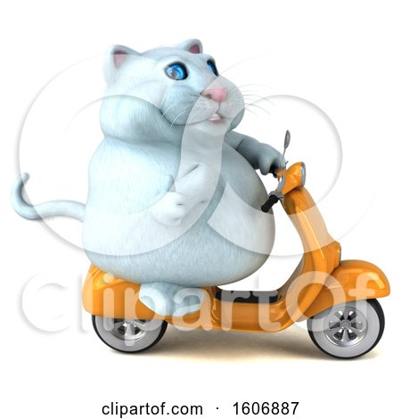 Clipart of a 3d White Kitty Cat Riding a Scooter, on a White Background - Royalty Free Illustration by Julos