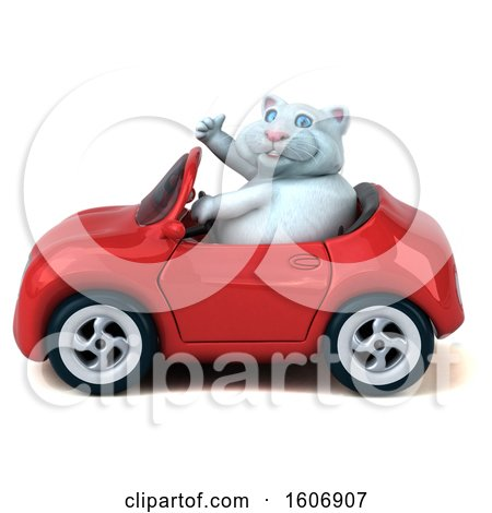 Clipart of a 3d White Kitty Cat Driving a Convertible Car, on a White Background - Royalty Free Illustration by Julos