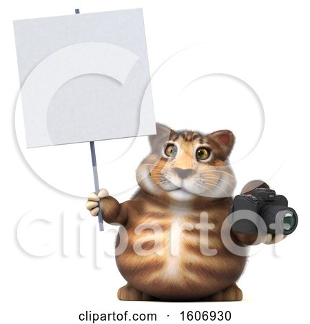 Clipart of a 3d Tabby Kitty Cat Holding a Camera, on a White Background - Royalty Free Illustration by Julos