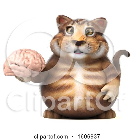 Clipart of a 3d Tabby Kitty Cat Holding a Brain, on a White Background - Royalty Free Illustration by Julos