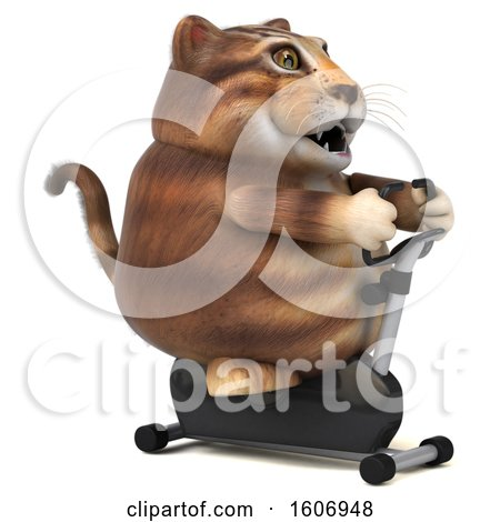 Clipart of a 3d Tabby Kitty Cat Holding a Spin Bike, on a White Background - Royalty Free Illustration by Julos