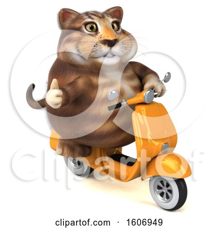 Clipart of a 3d Tabby Kitty Cat Riding a Scooter, on a White Background - Royalty Free Illustration by Julos