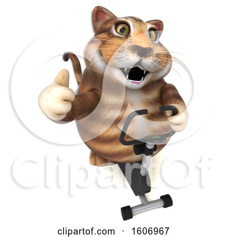 Clipart of a 3d Tabby Kitty Cat Exercising on a Spin Bike, on a White Background - Royalty Free Illustration by Julos