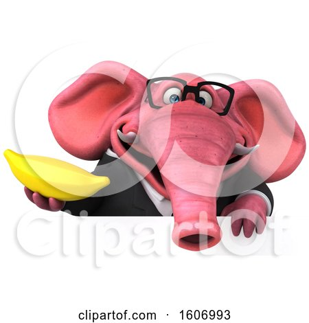 Clipart of a 3d Pink Business Elephant Holding a Banana, on a White Background - Royalty Free Illustration by Julos