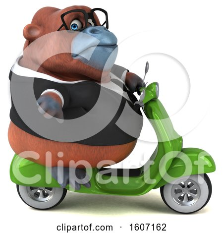 Clipart of a 3d Business Orangutan Monkey Riding a Scooter, on a White Background - Royalty Free Illustration by Julos