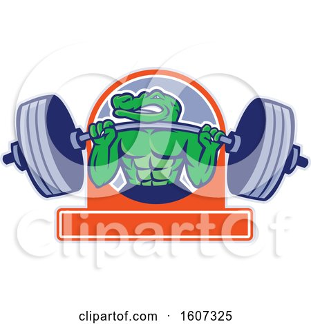 Clipart of a Muscular Alligator Man Mascot Lifting a Heavy Barbell over a Banner - Royalty Free Vector Illustration by patrimonio