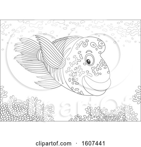 Clipart of a Black and White Humphead Wrasse Fish over a Reef - Royalty Free Vector Illustration by Alex Bannykh