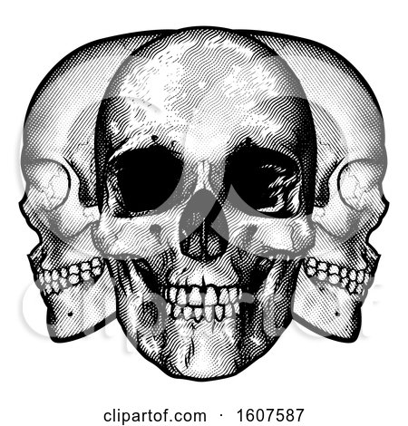 Clipart of a Trio of Human Skulls, Black and White Vintage Etched Style - Royalty Free Vector Illustration by AtStockIllustration