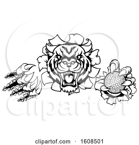 Clipart of a Black and White Vicious Tiger Mascot Slashing Through a Wall with a Golf Ball - Royalty Free Vector Illustration by AtStockIllustration