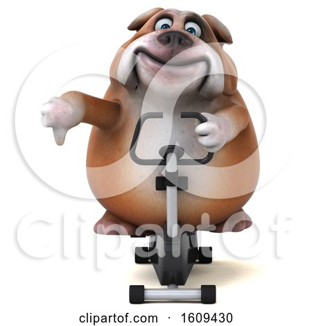 Clipart of a 3d Bulldog Exercising on a Spin Bike, on a White Background - Royalty Free Illustration by Julos