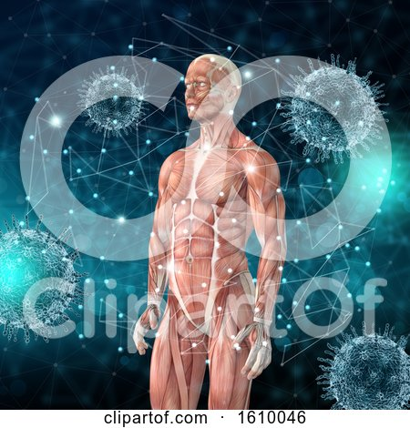 3D Medical Background with Male Figure with Muscle Map and Virus Cells by KJ Pargeter
